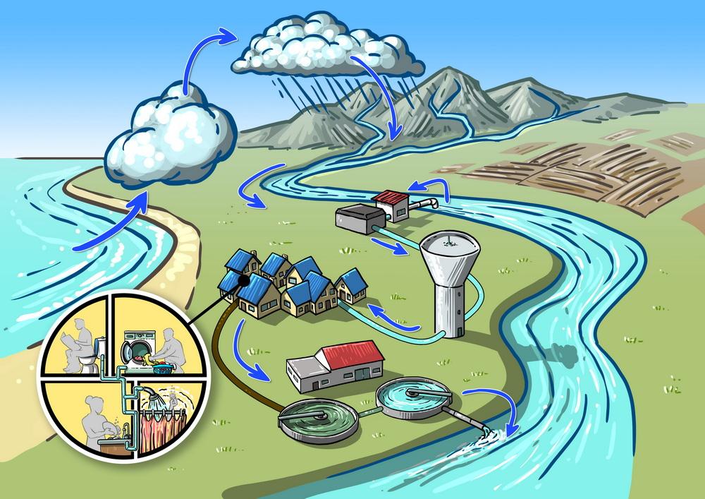 Cycle de l\'eau couleur